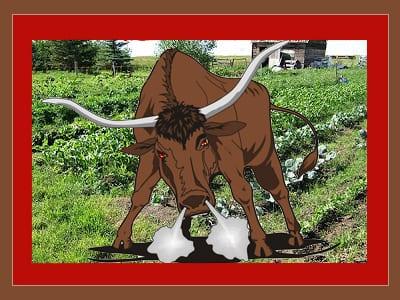 Beginner Farmer Beware: Just How Hard IS Farming Anyway? post thumbnail