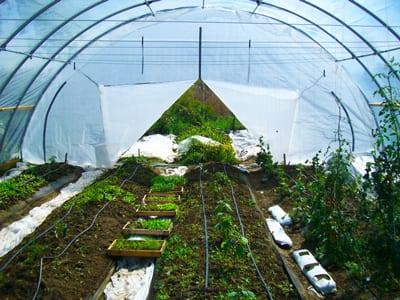 Small Farm Financial Sustainability Study post thumbnail